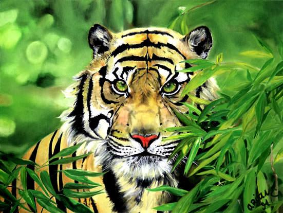 Tigeraugenblick