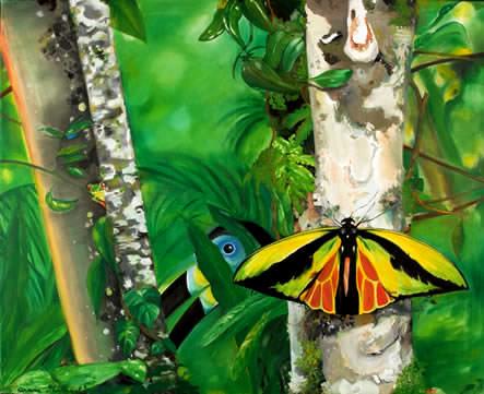 Ariane michaelis gt tiere im regenwald jungle story