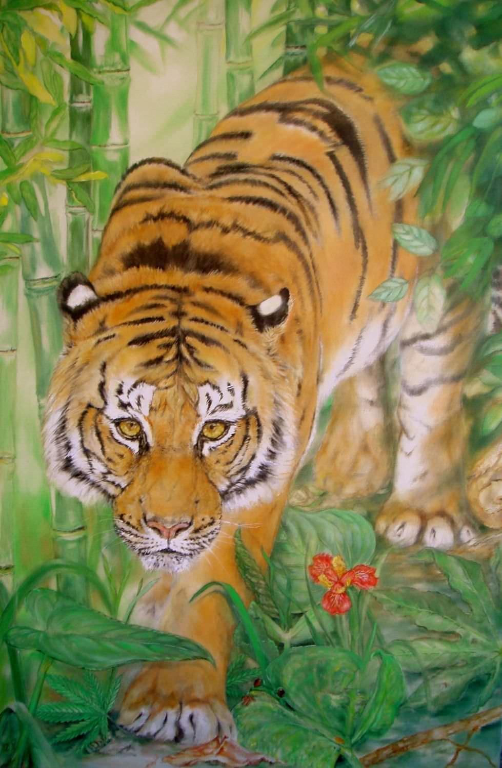 Auftragsbild – Tiger