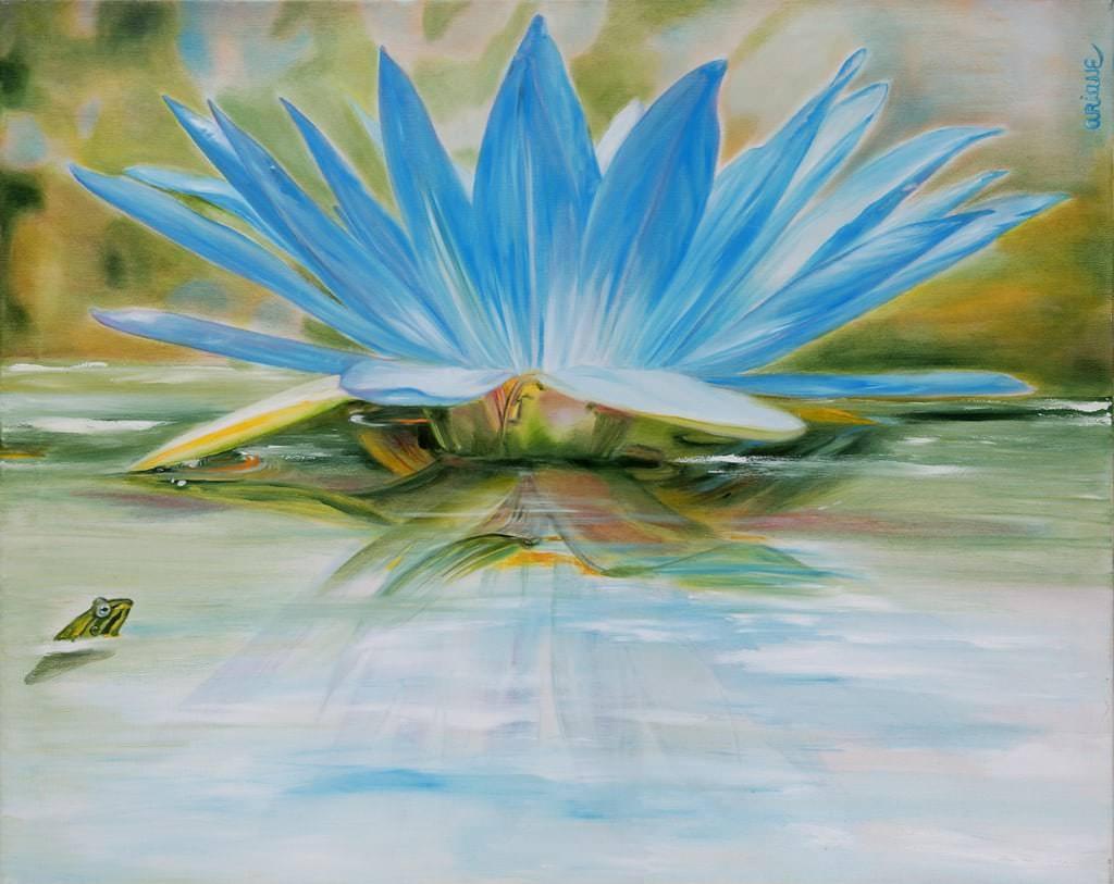 Die Blaue Seerose