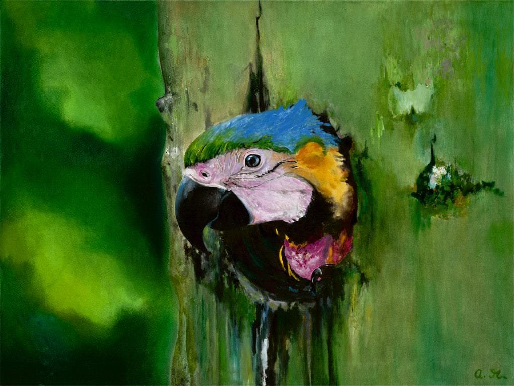Papagei Babe  (Auftragsbild)